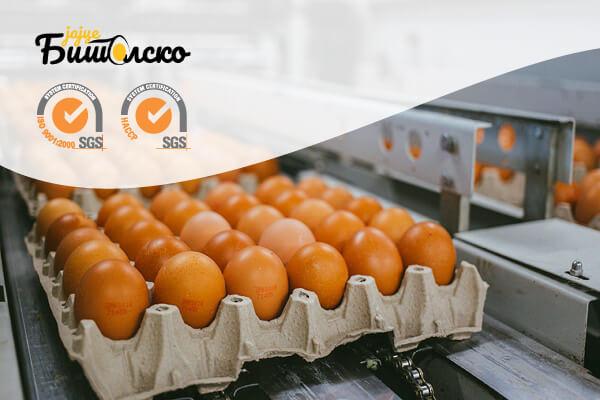 Бели Мост - Живинарска Фарма за производство на јајца - Производи - Сертификати